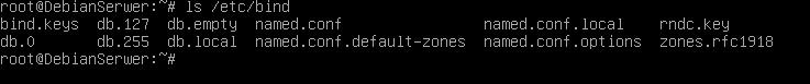 konfiguracja DNS